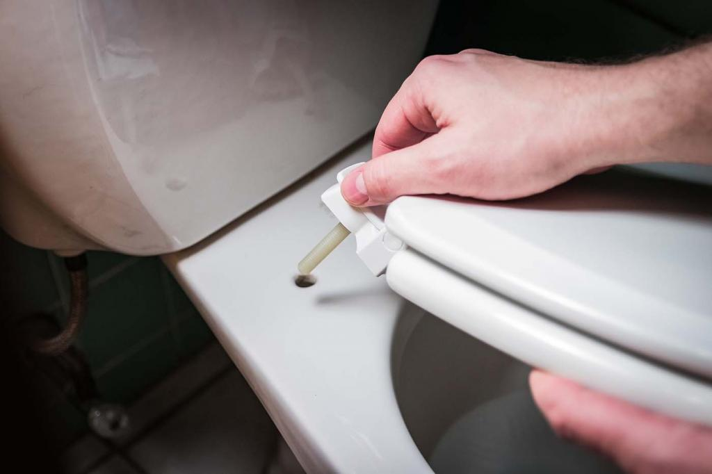 Person changing a toilet seat lid